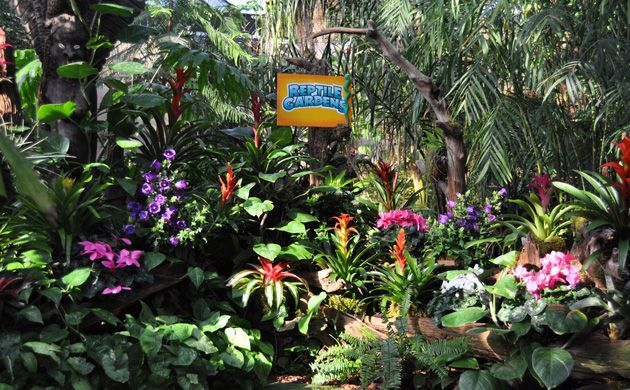 Indoor Jungle in the Sky Dome at Reptile Gardens in Rapid City ...