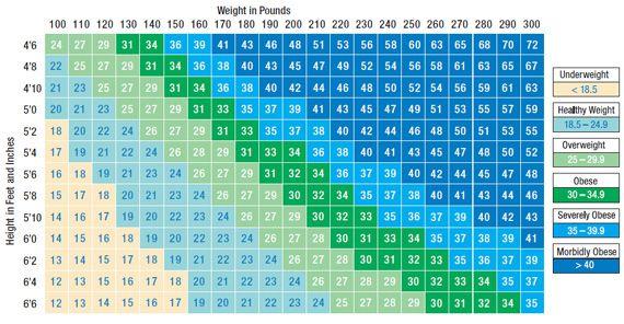women s bmi chart