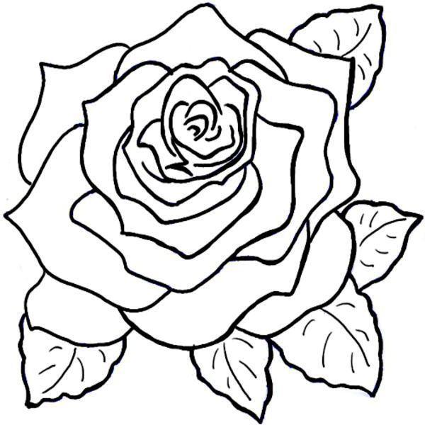 rosa para pintar y colorear | FIGURAS Y FORMAS | Pinterest | Pintar ...