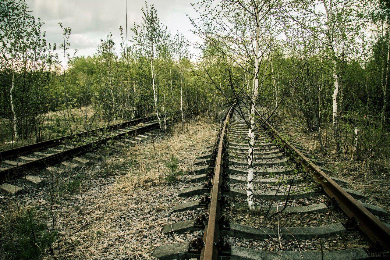 Новости | Photo, Railroad tracks, Railroad