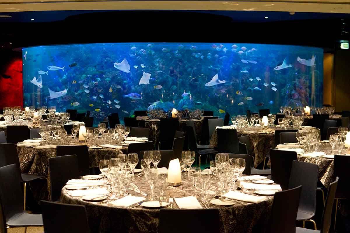 garden party wedding venues melbourne%0A Wedding venues    Melbourne Aquarium  Fish Bowl