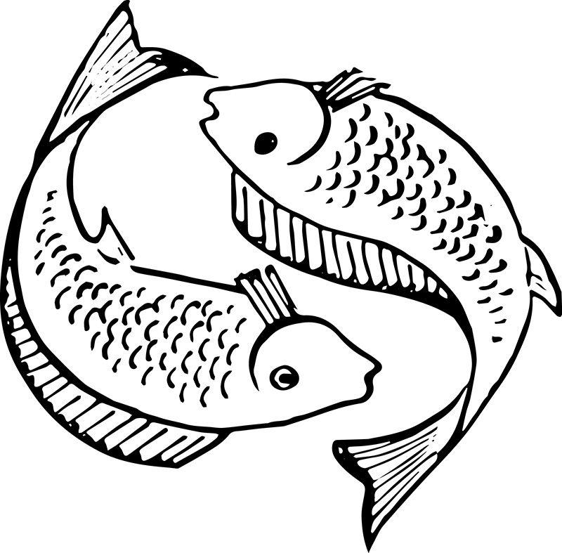 Christian Fish Symbol Creation7 Free Vector Art Pinterest