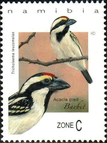 Stamp Acacia Pied Barbet Tricholaema Leucomelas Namibia Barbets Mi Na 1560 Small Art Stamp Postage Stamp Art