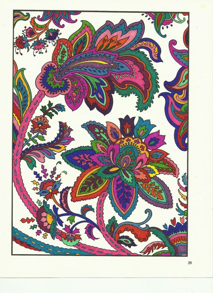 Jaclyn Suzanne Hall 18 Division From Paisley Design Coloring Book
