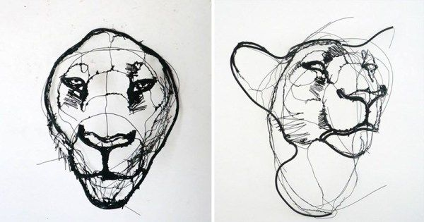 Artist creates wire animal sculptures that look like scribbled pencil drawings