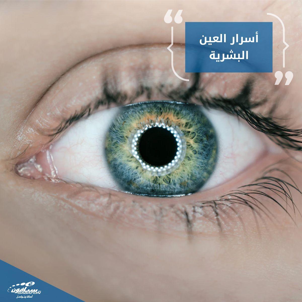 هل تعلم أن شبكية العين تحتوي على نحو 135 مليون خلية حسية مسؤولة عن التقاط الضوء وتمييز الألون المتعددة ومن ثم نقلها الى الدماغ عبر العصب البصري لمعالجة ال Social