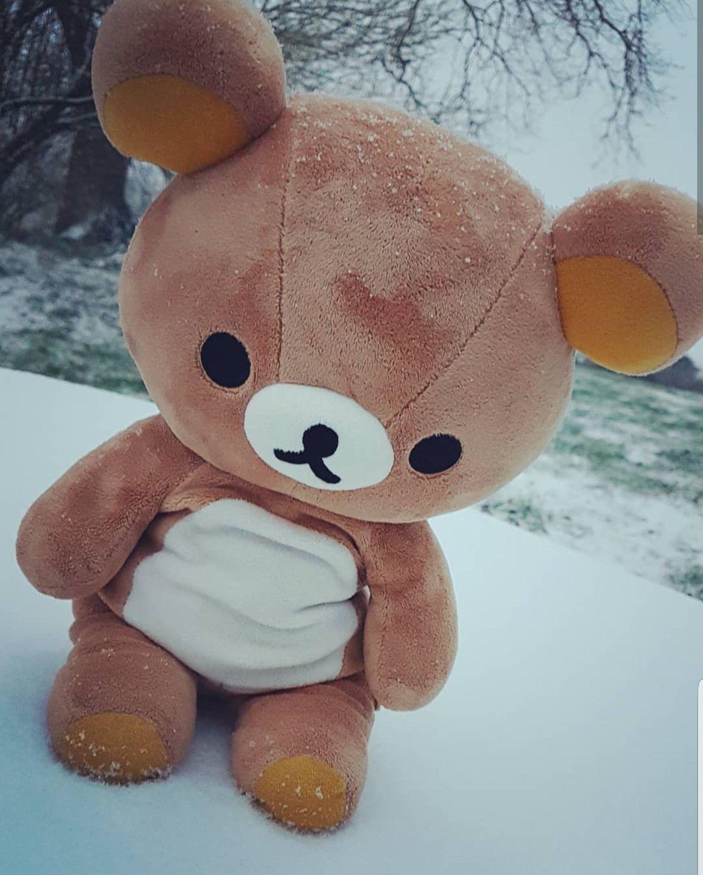 Snow Kuma (With images) Cute stuffed animals