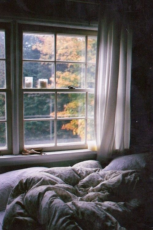 Comfy Bed Tumblr Cozy House Windows Home