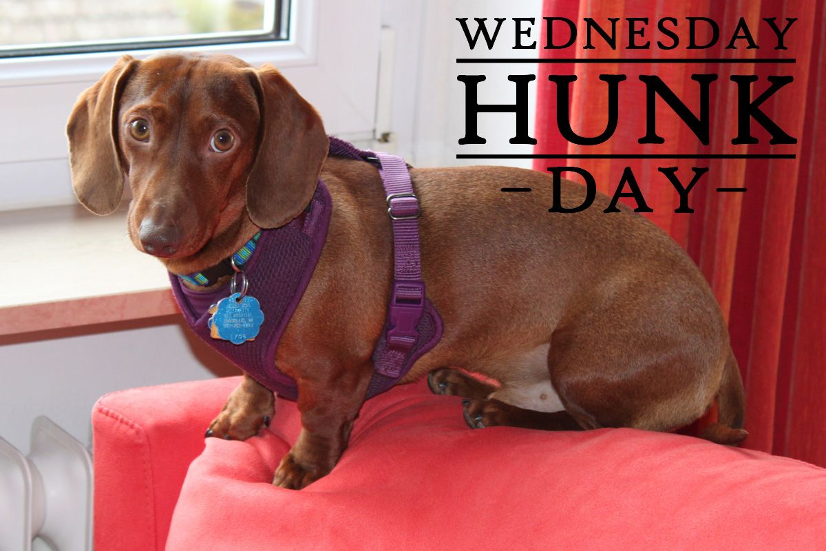 Today's Wednesday Hunk is Heinrich from both Corvallis