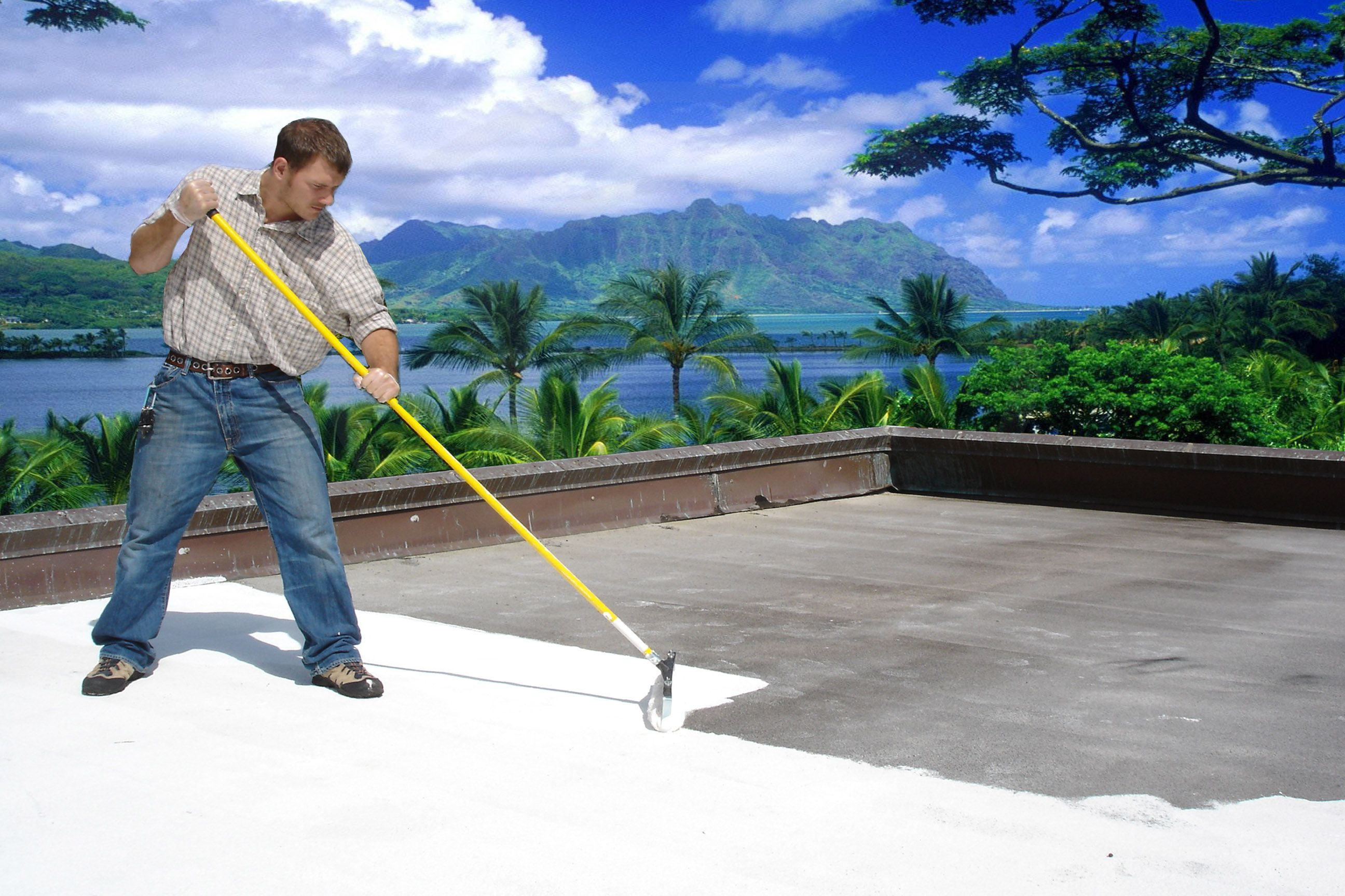 Coat your flat roof with a white reflective roof coating  We