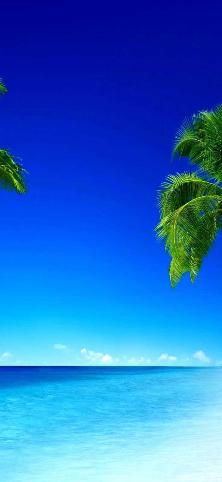 9 Best Ocean Iphone Xs Wallpapers Best Water Beach Sea Backgrounds Ocean Wallpaper Beach Wallpaper Nature Photography
