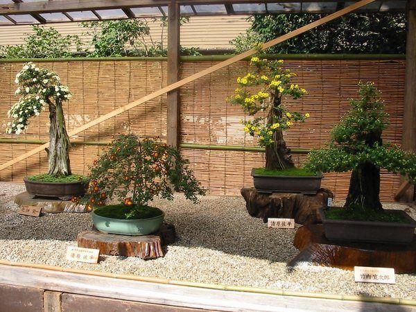 Stunning Oriental Garden Decor Japanese Lanterns Asian Garden ...