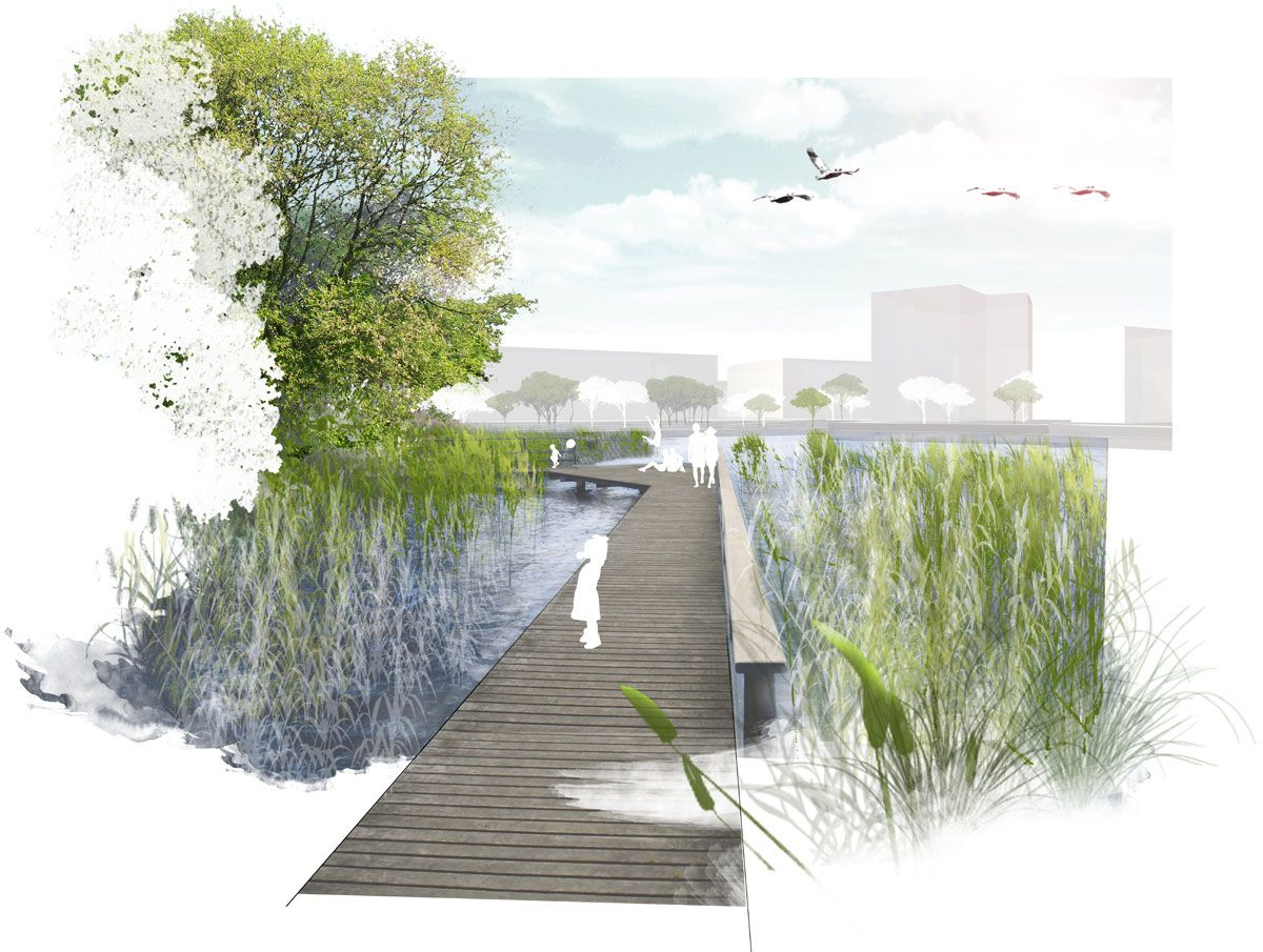 Aspern Seepark / Realgru00fcn Landschaftsarchitekten | Architectural Competitions | Pinterest | More ...
