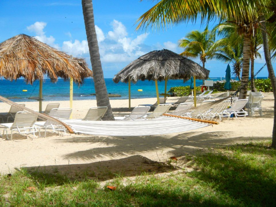 Sandy Beach Waiting For Your Limin Time Tamarind Reef Resort Spa St Croix Usvi