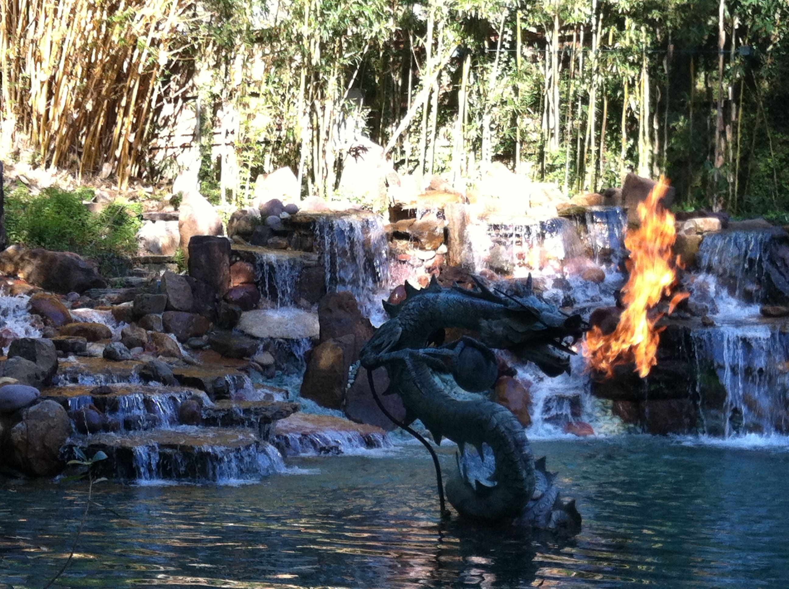 Fire breathing dragon with bamboo in the background.