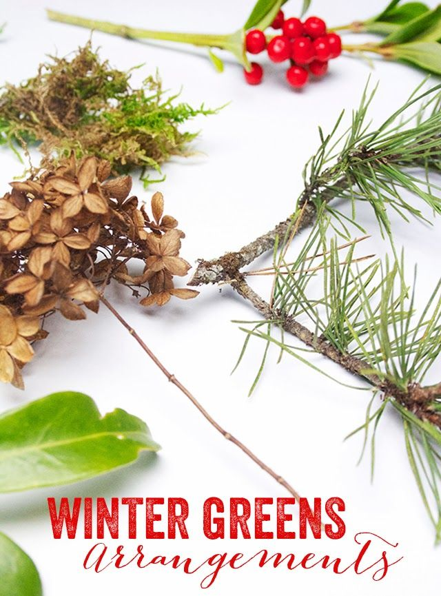 Winter greens arrangement...so simple but beautiful way to bring the outside in!