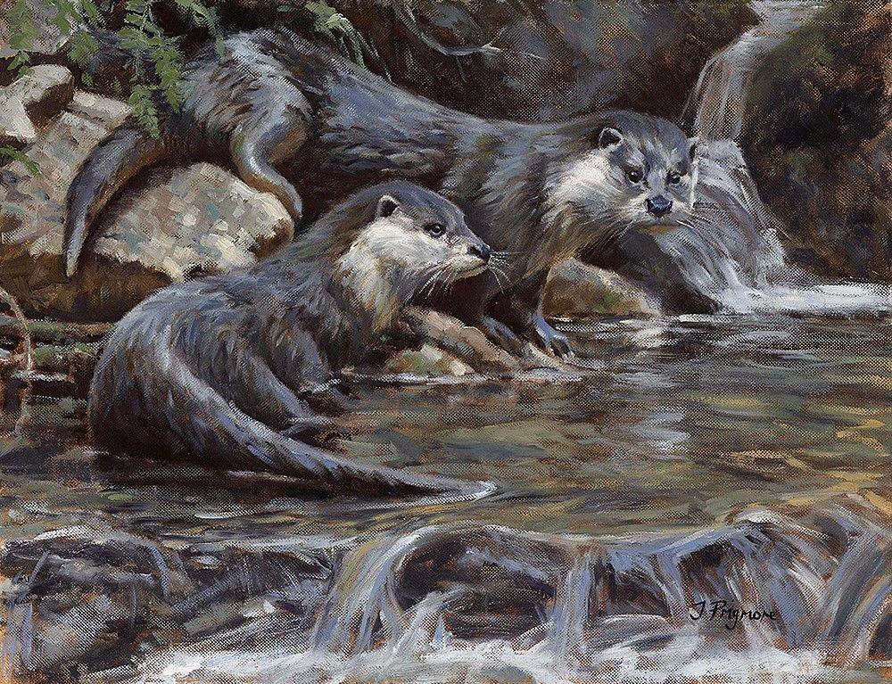 Картинки дикие животные башкортостана выдра