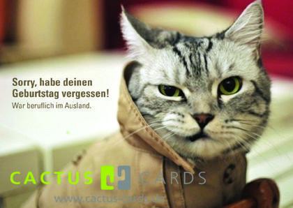 Sorry Habe Deinen Geburtstag Vergessen Postkarte Mit Katze