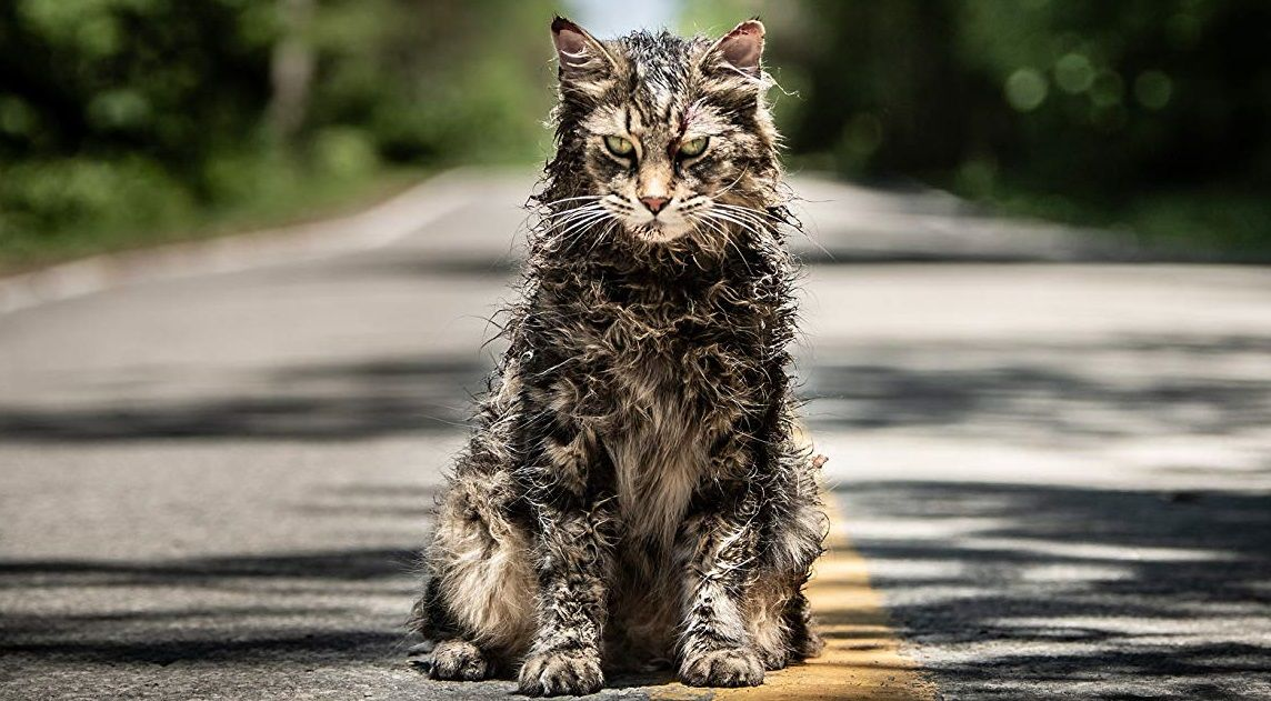 Official Trailer From Pet Sematary 2019 Pet Sematary Horror Movies Scariest Pets