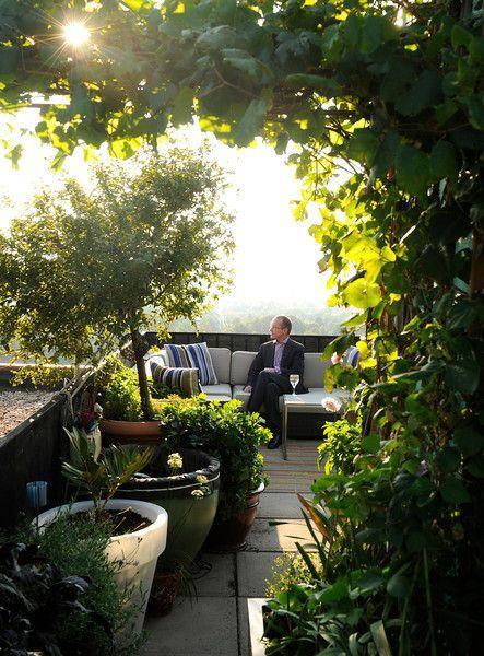 Denver Post - Ted Trimpa's rooftop garden in Cheesman park