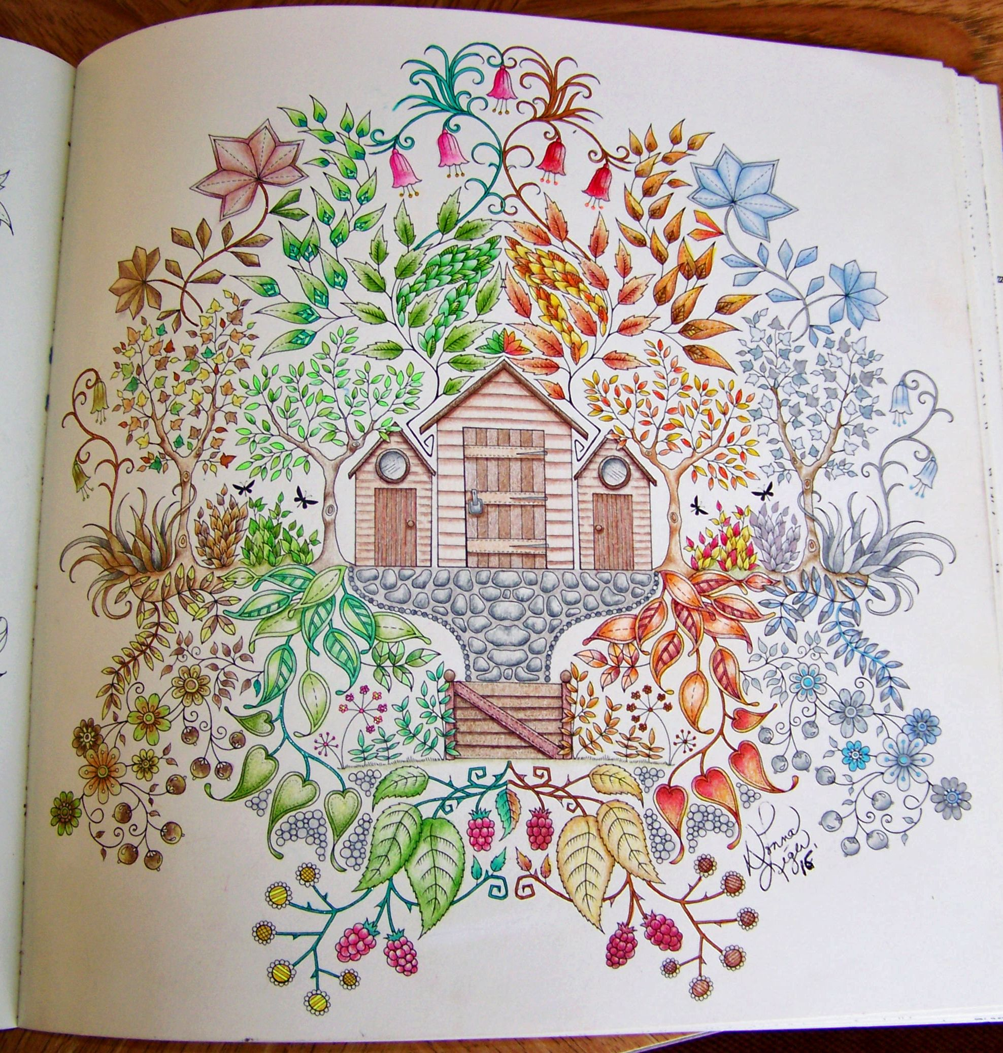 Adult Coloring Book Enchanted Forest Johanna Basford Shed Done As The Four Seasons