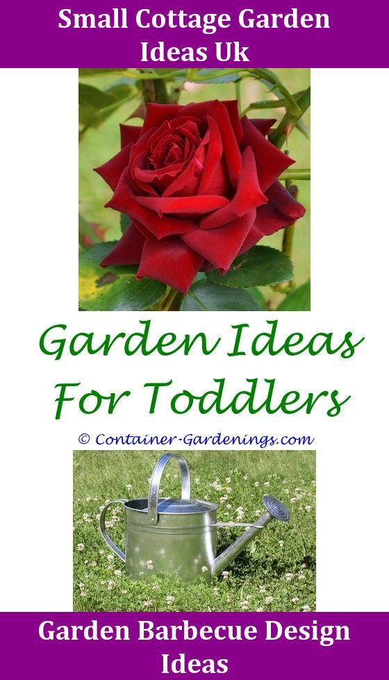 Gardenloversclub,Gargen olive garden tips new home garden ideas beer ...