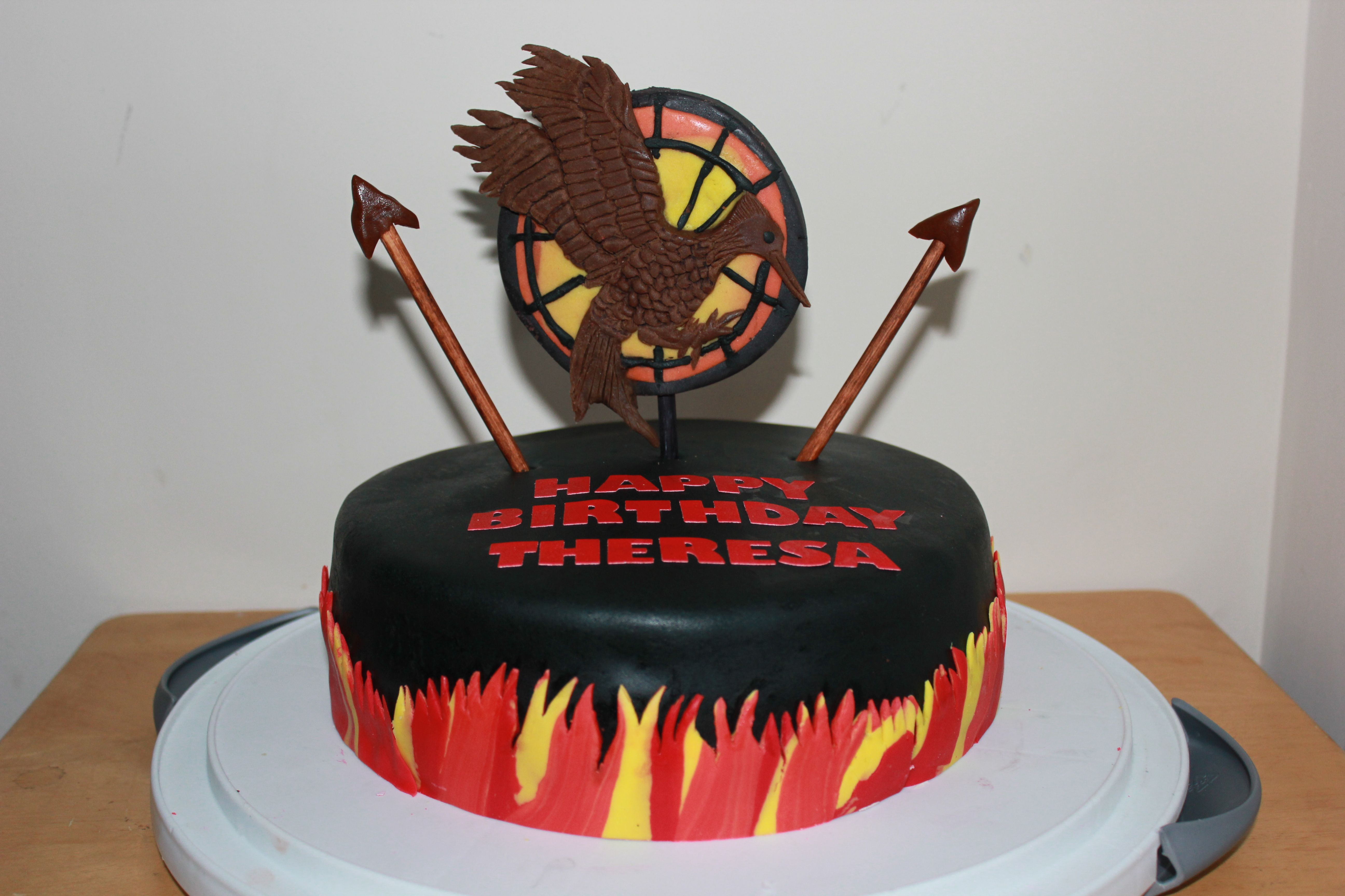 Theresas 14th Birthday Cake Catching Fire Theme From The Hunger