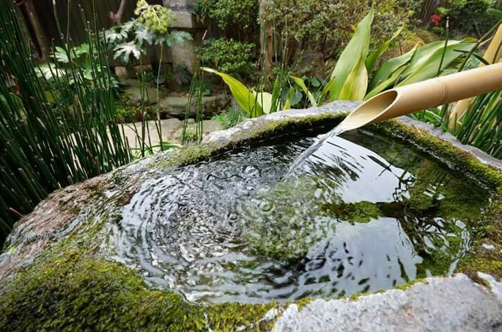 Garden design tip    Adding a water feature can make a back garden  feel like an Garden design dip