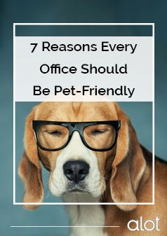 7 Reasons Every Office Should Be Pet Friendly Pets Pet Care Tips Puppy Love