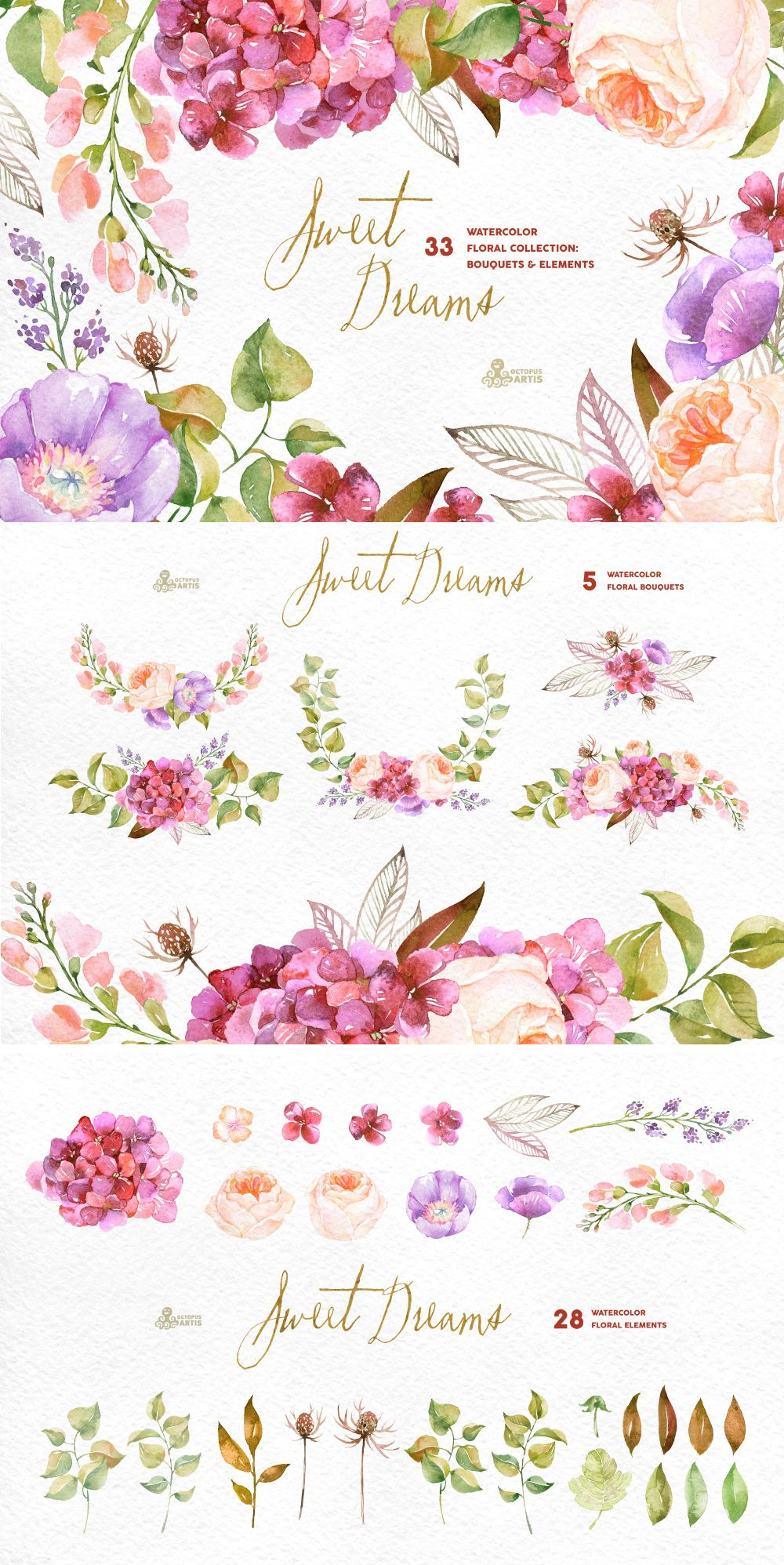 Sweet dreams floral collection watercolor illustration sweet