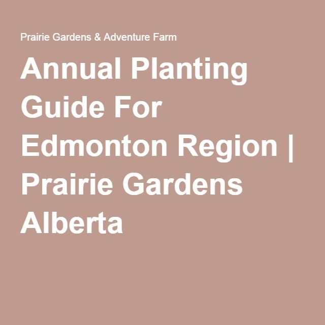 Annual Planting Guide For Edmonton Region & TOP 10 flowers for EAST or WEST patio pots| Prairie Gardens Alberta