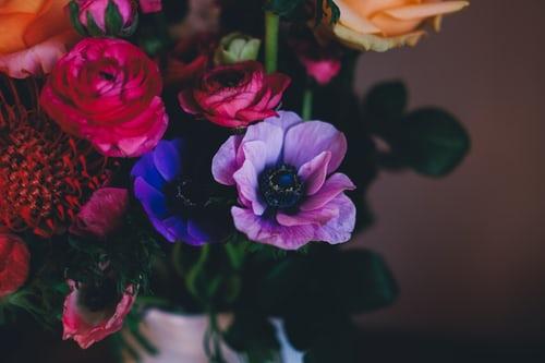 اجمل بوكيه ورد طبيعي صور اجمل بوكيه ورد طبيعي جميل Zina Blog In 2020 Flowers Plants Free Plants