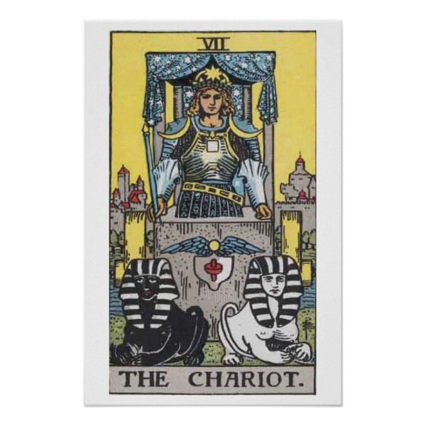 the chariot tarot card poster  zazzle  the chariot