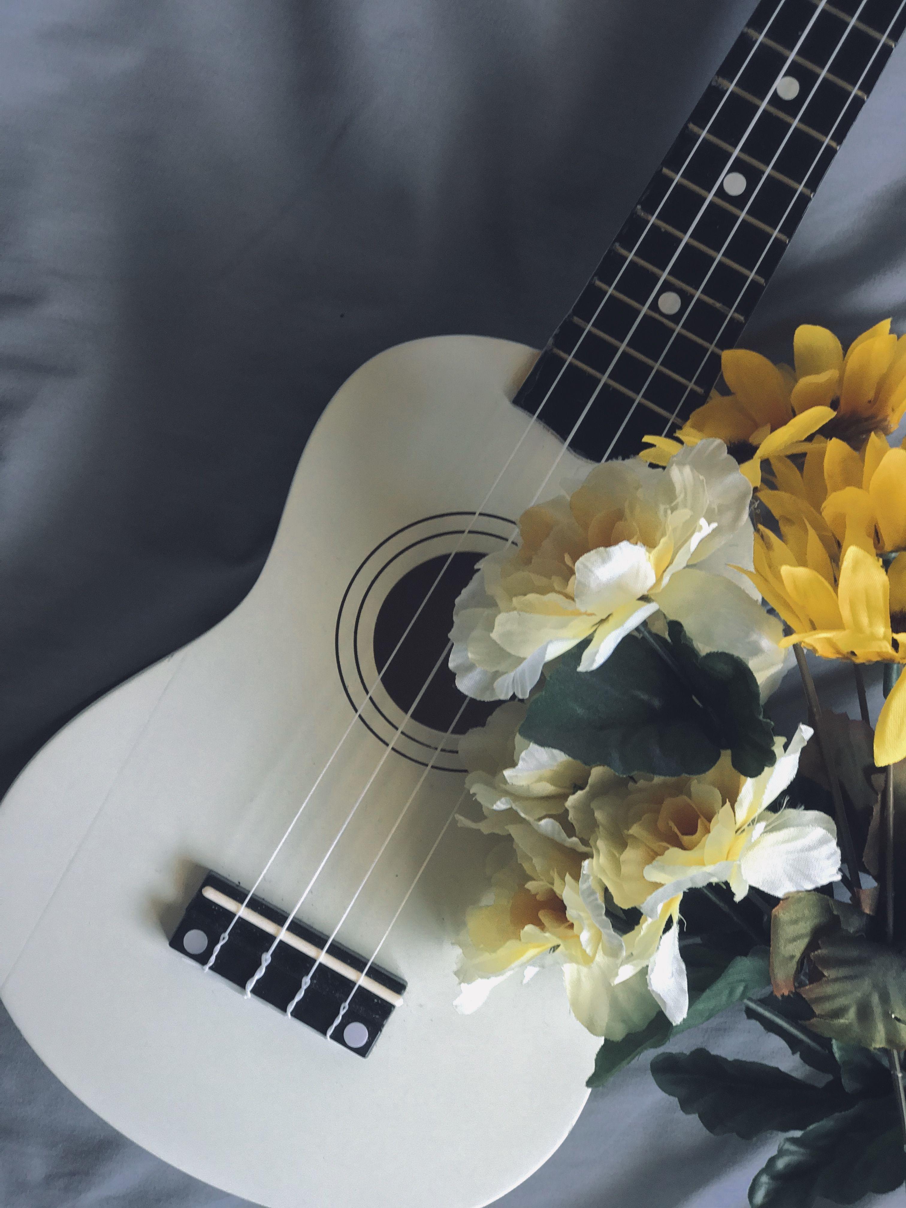 Фото цветов с гитарой