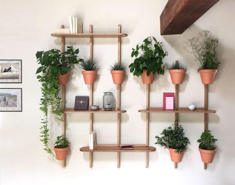 Coprisedie Amazon ~ 37 best :: wall shelves bookshelf :: images on pinterest homes