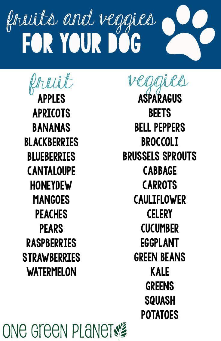 Can I Feed My Dog Raw Asparagus