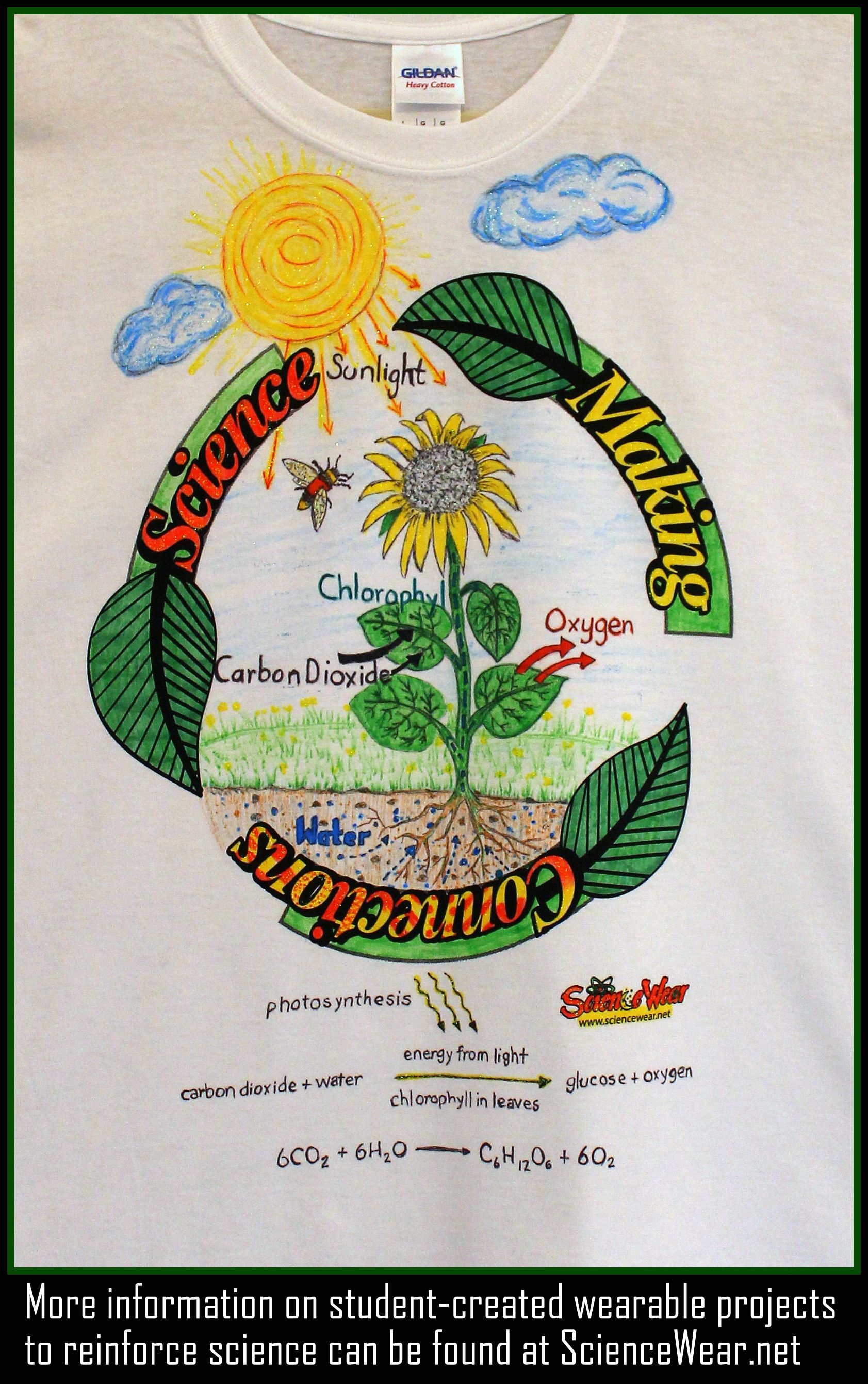 Photosynthesis Project Have Students Create A Wearable Poster Featuring A Cycle In Science