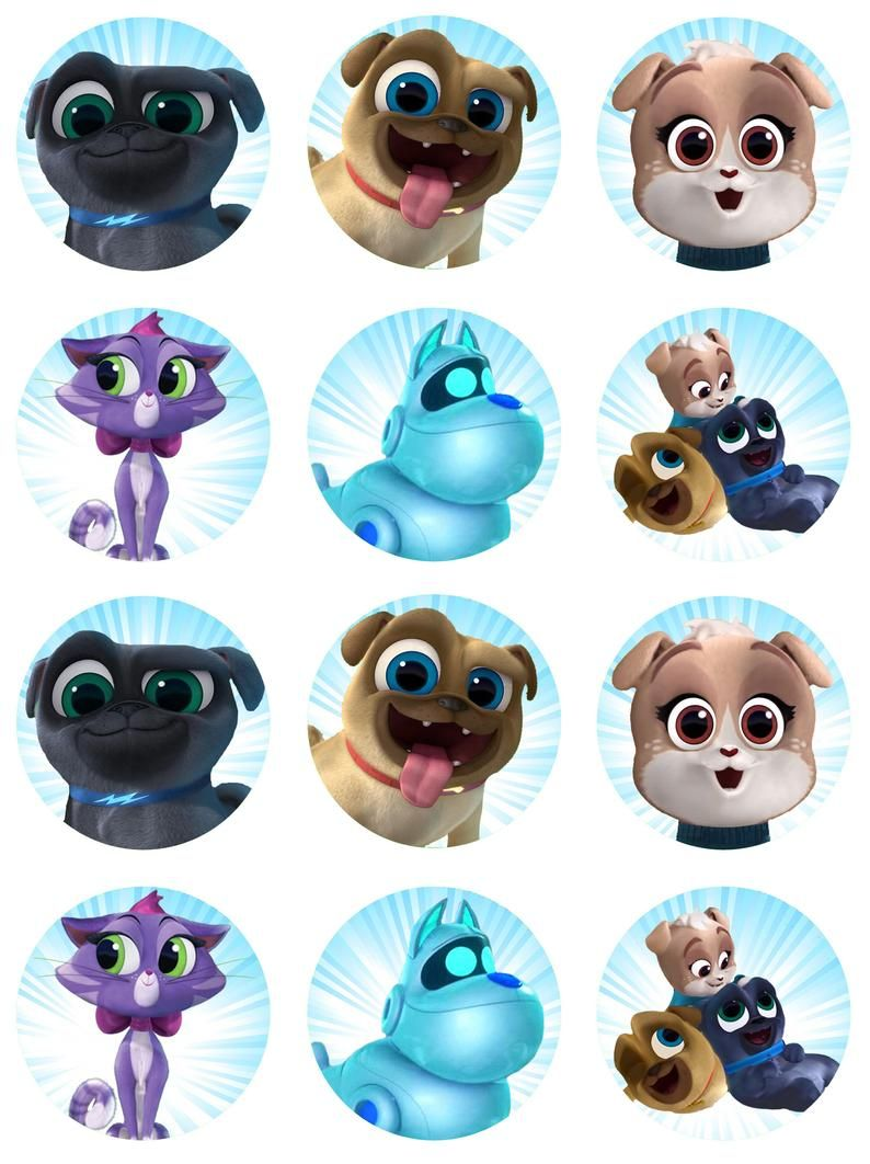 Pin on puppy pals