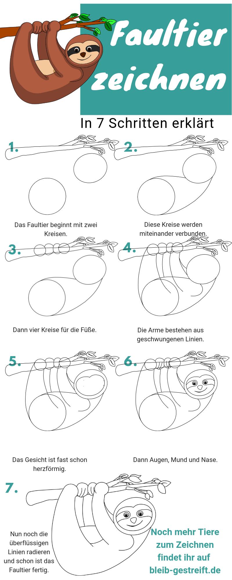 faultier zeichnen lernen  eine anleitung in nur 7