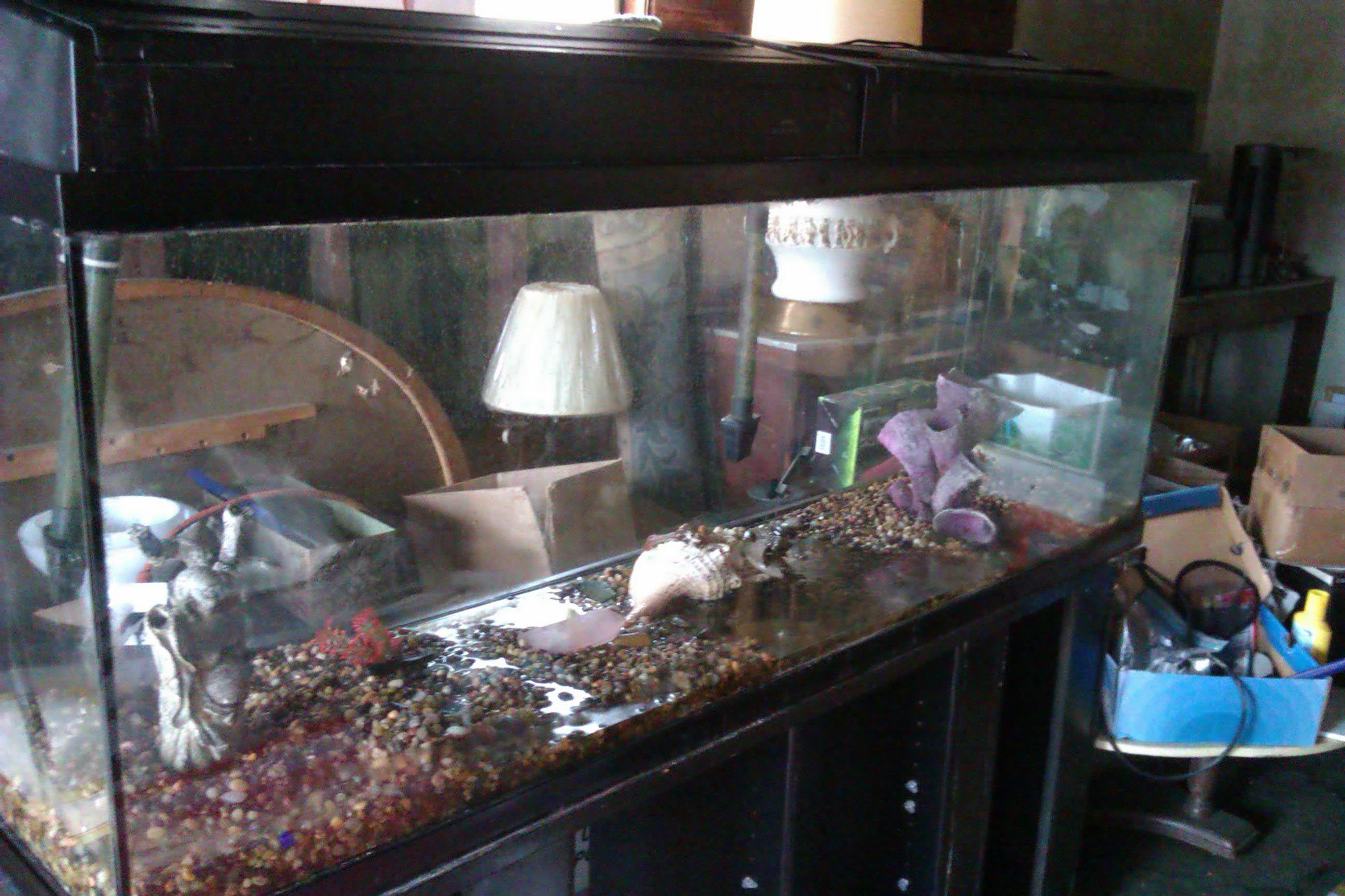 100 Gallon Aquarium Hood Aquarium Ideas Pinterest