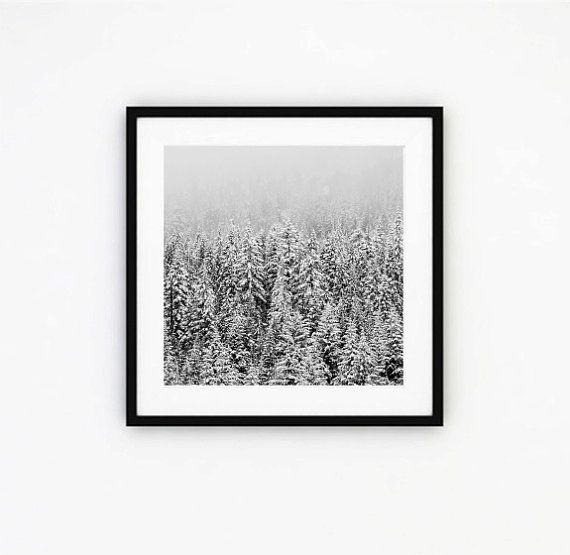 Snow forest forest photography nature photography by ishtarprints