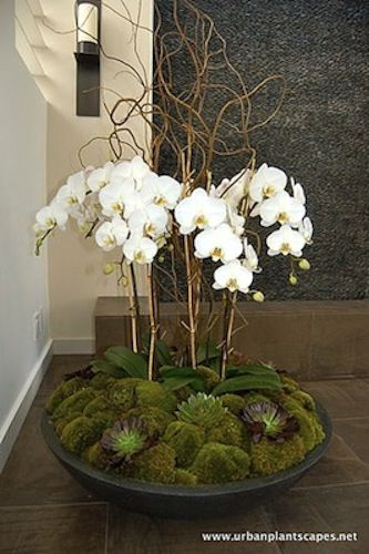 rather than consider them products i treat flowers and plants as rh pinterest com