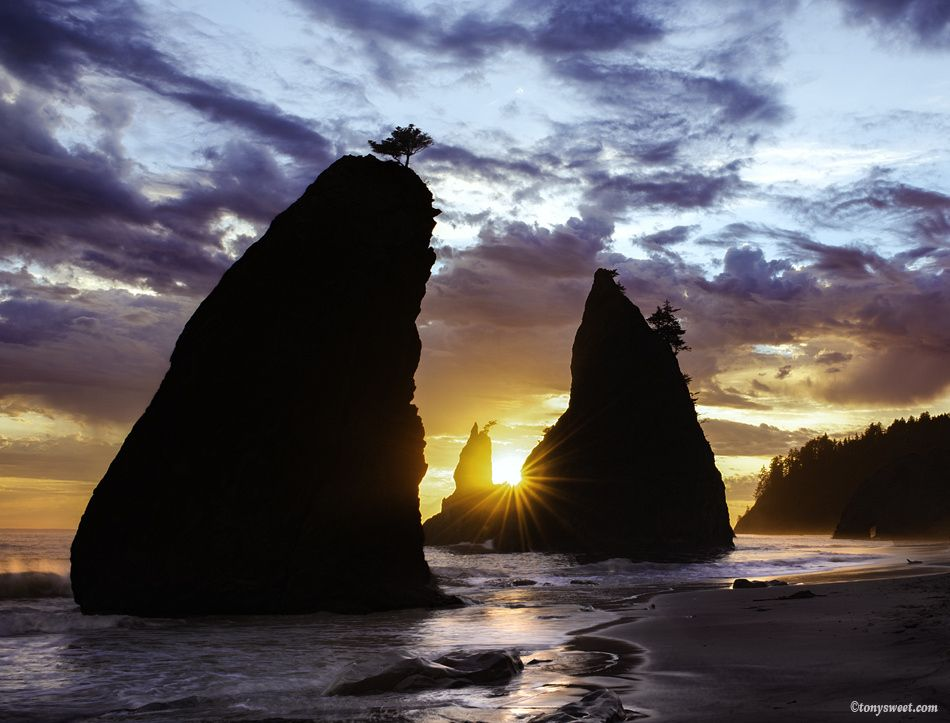Rialto Beach - Sunset at one of the classic sea stack beaches in Washington.