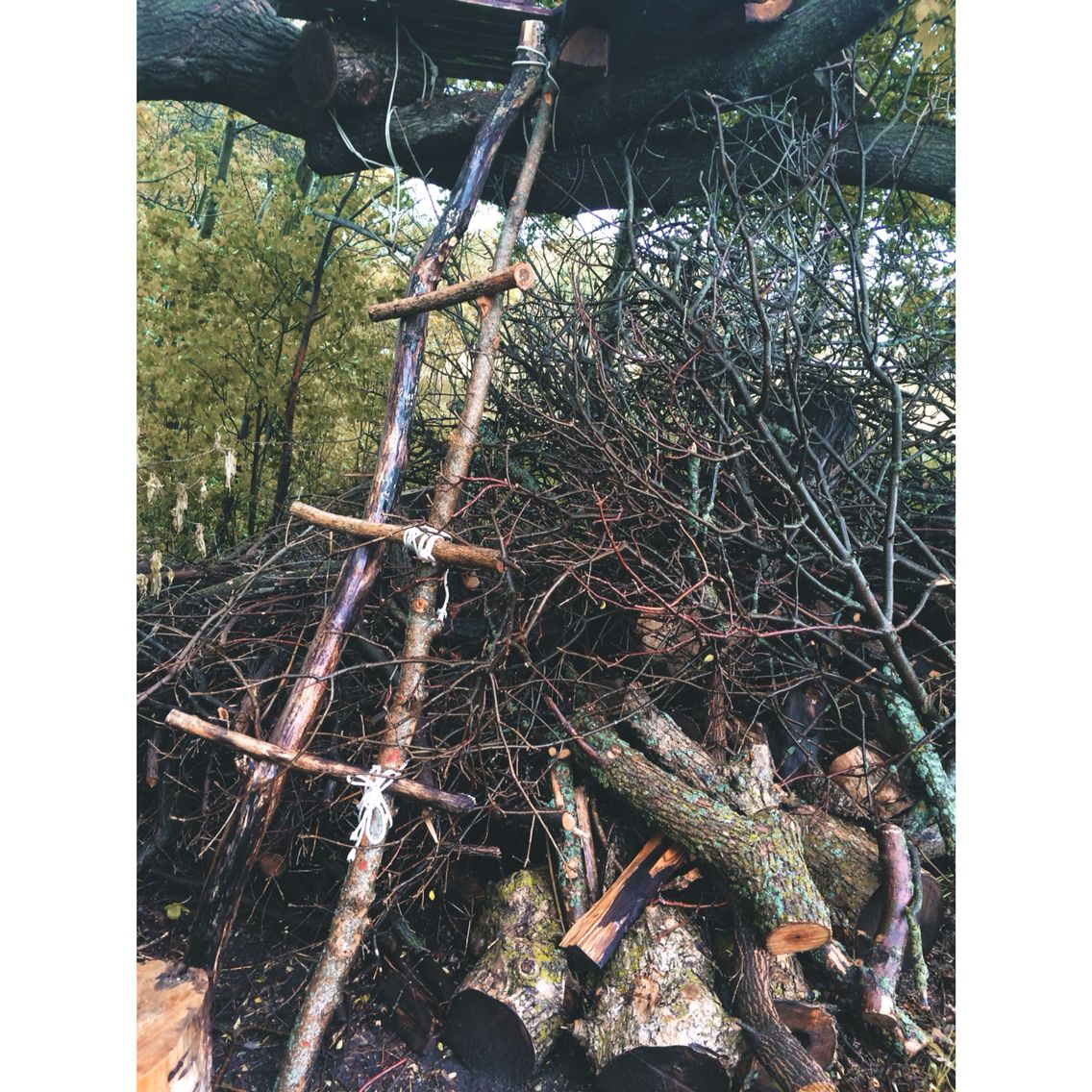 makeshift treehouse