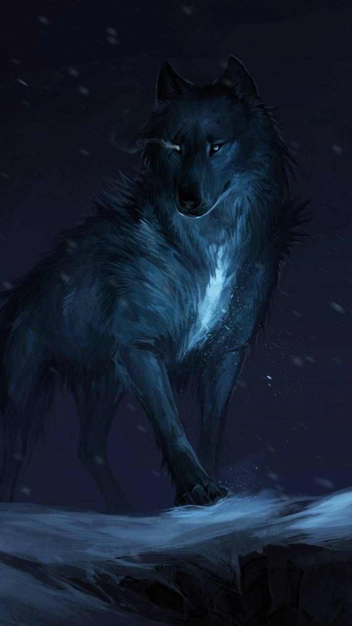 Download Wolf Wallpaper by pramucc 75 Free on ZEDGE
