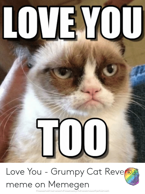 Love You Too Yeah You Heard That Right Grumpy Cat Finally Said It In Your Dreams Maybe Grumpy Cat Cats Grumpy