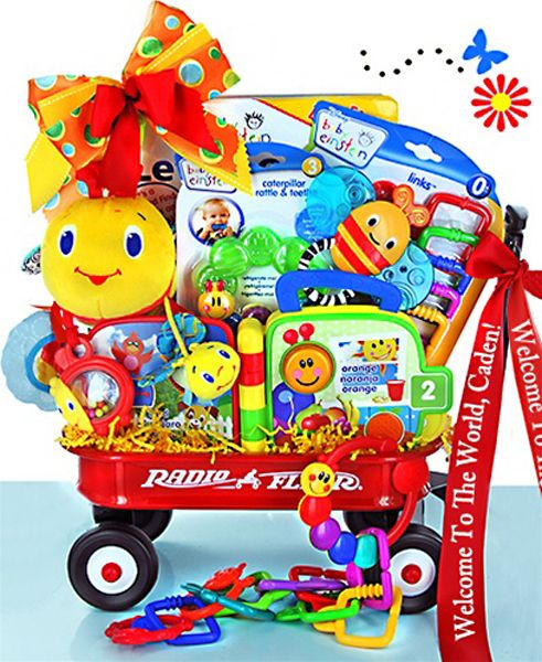 Baby Einstein Gift Baskets For Boys