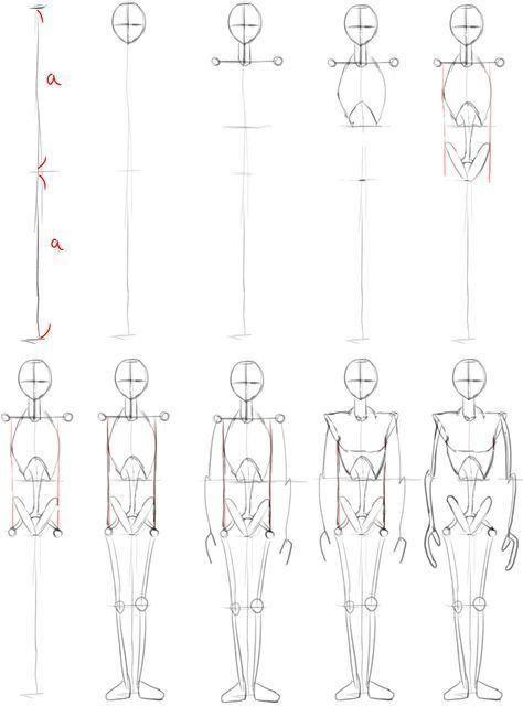 人間を描くための骸骨を組み立てよう イラスト講座 デッサン