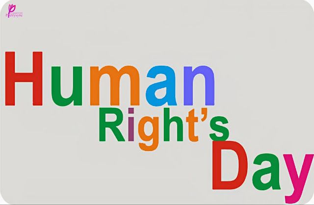 11 Best Human Rights Day Ideas Human Rights Day Human Rights Human