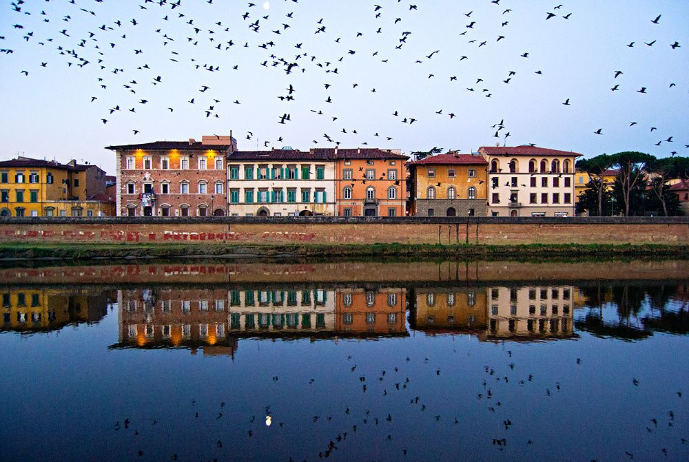 A wonder of nature - Lungarni at dawn - Pisa, Italy. For more works check my homepage: carlocafferini.com